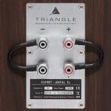 Фото № 4 Triangle Esprit Antal EZ - цены, наличие, отзывы в интернет-магазине
